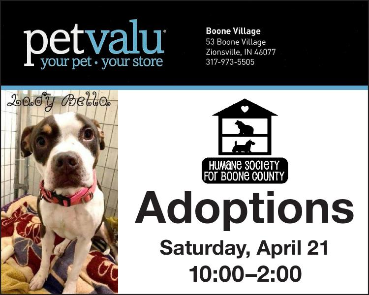 Humane Society for Boone County Adoption Event